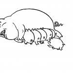 Pig Coloring Pages for Kids Image