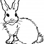 Rabbit Coloring Page Image