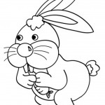 Rabbit Coloring Page Picture