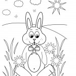 Rabbit Coloring Page Pictures