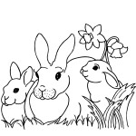 Rabbit Coloring Page for Kids Image