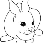 Rabbit Coloring Page for Kids Pictures
