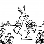 Rabbit Coloring Pages Photo