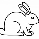 Rabbit Coloring Pages for Kids Photos