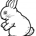 Rabbit Coloring Pages for Kids Pictures