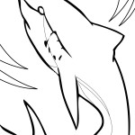 Shark Coloring Page Picture