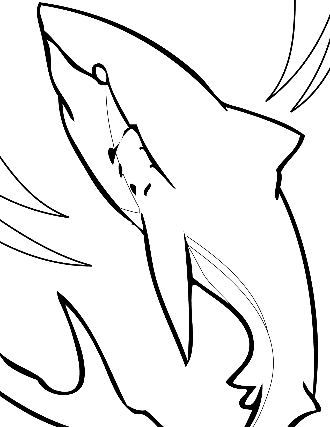 Spotted eagle ray coloring pages - Great White Shark Coloring Pages Pictures