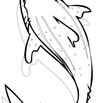 Shark Coloring Page Pictures