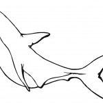 Shark Coloring Page for Kids Image