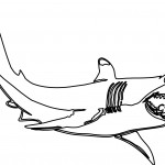 Shark Coloring Page for Kids Photo