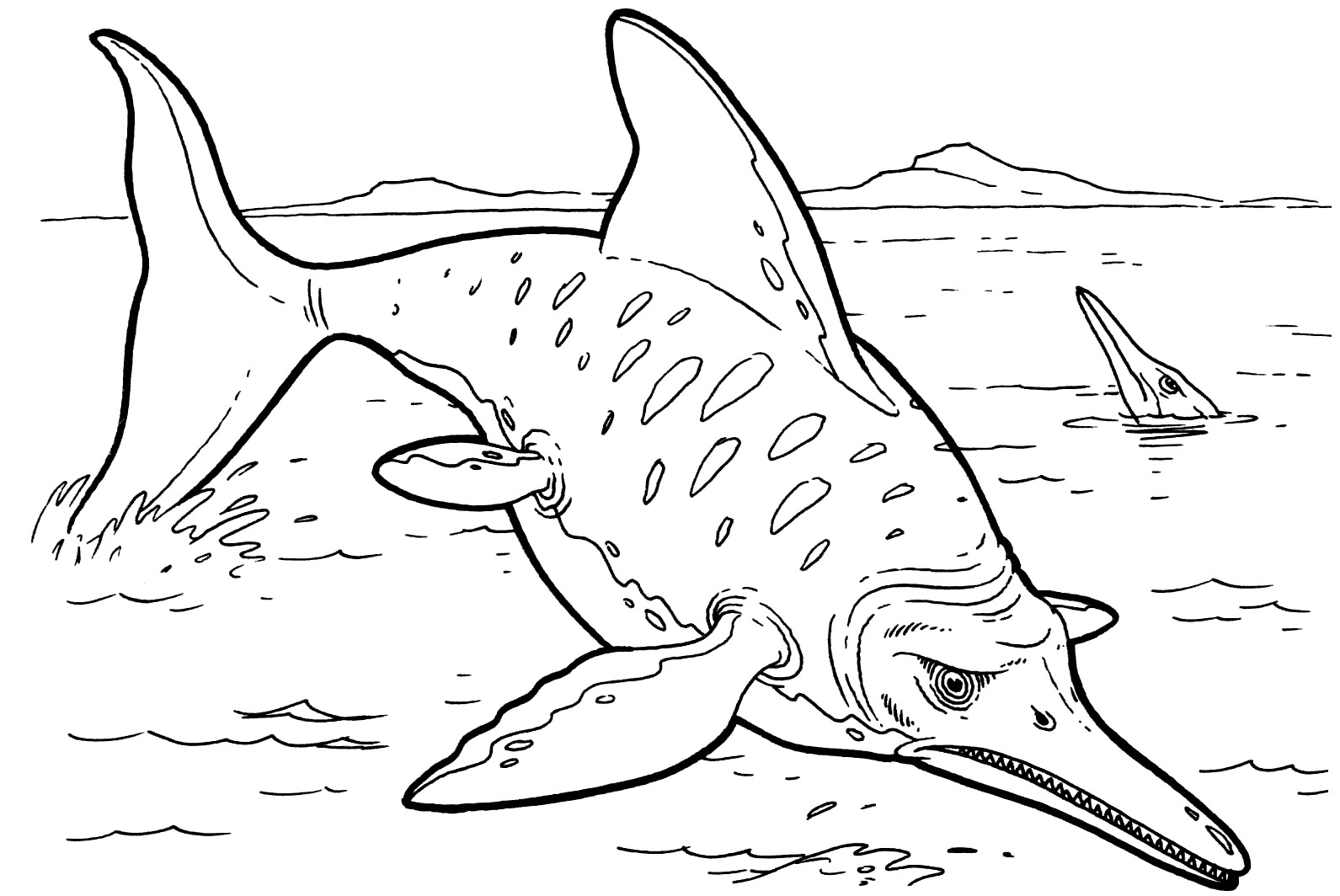 Free Printable Shark Coloring Pages For Kids | Animal Place