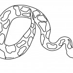 Snake Coloring Page Images