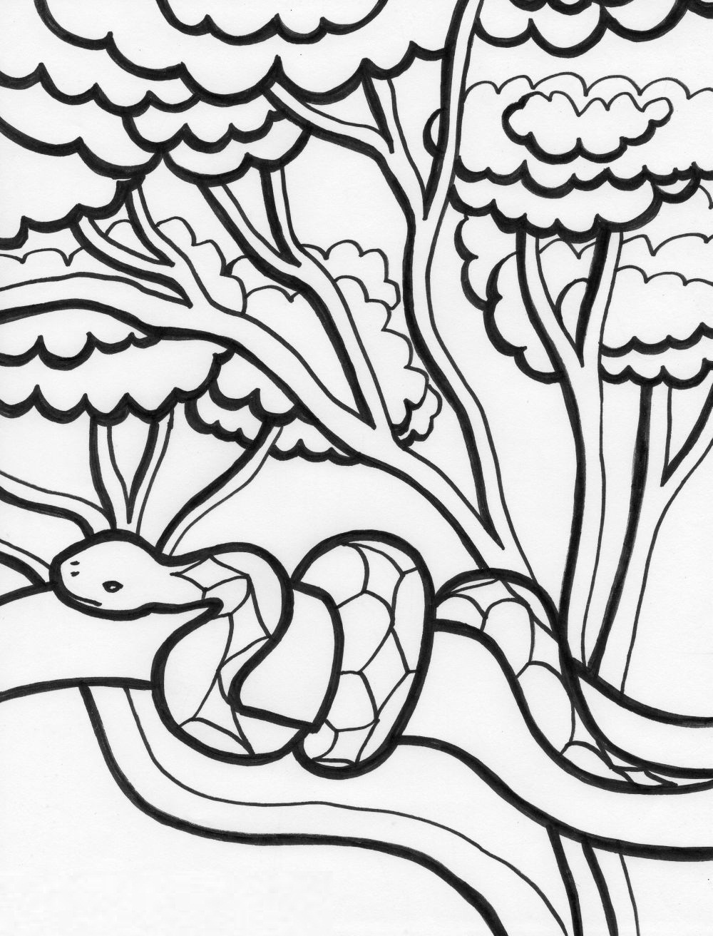 Free Printable Snake Coloring Pages For Kids | Animal Place