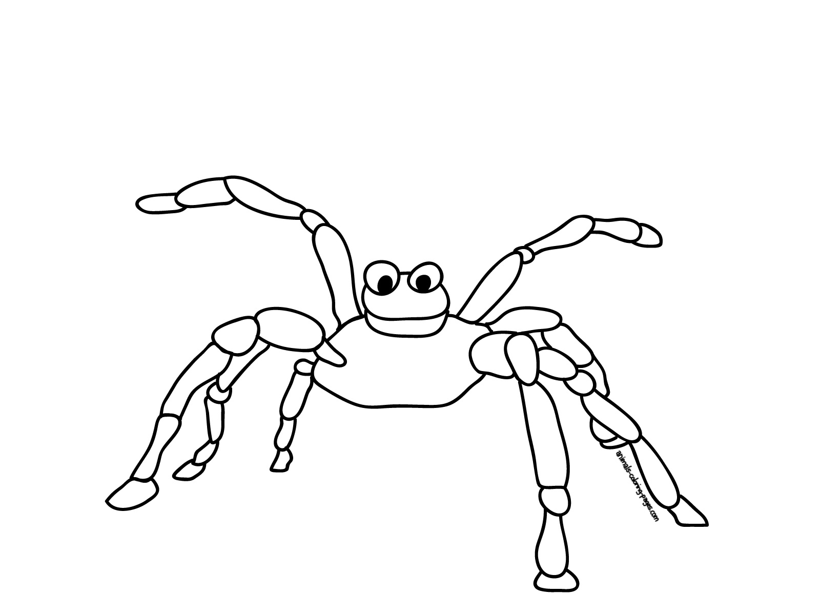 Free printable spider coloring pages for kids animal place for Spiders coloring pages
