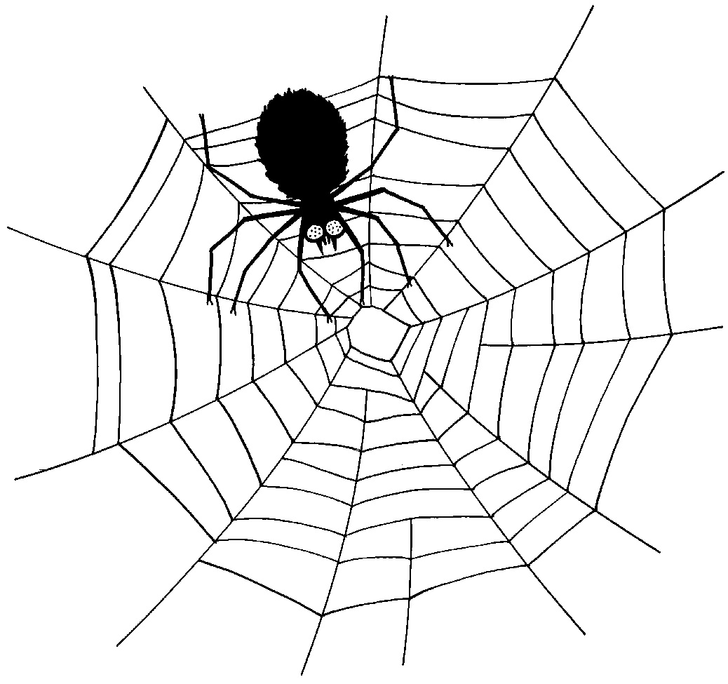 Free printable spider coloring pages for kids animal place for Spider coloring pages