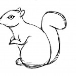 Squirrel Coloring Page Images