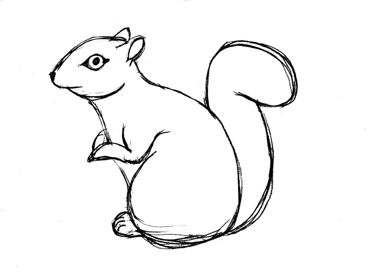 Free Printable Squirrel Coloring