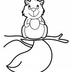 Squirrel Coloring Page Photos