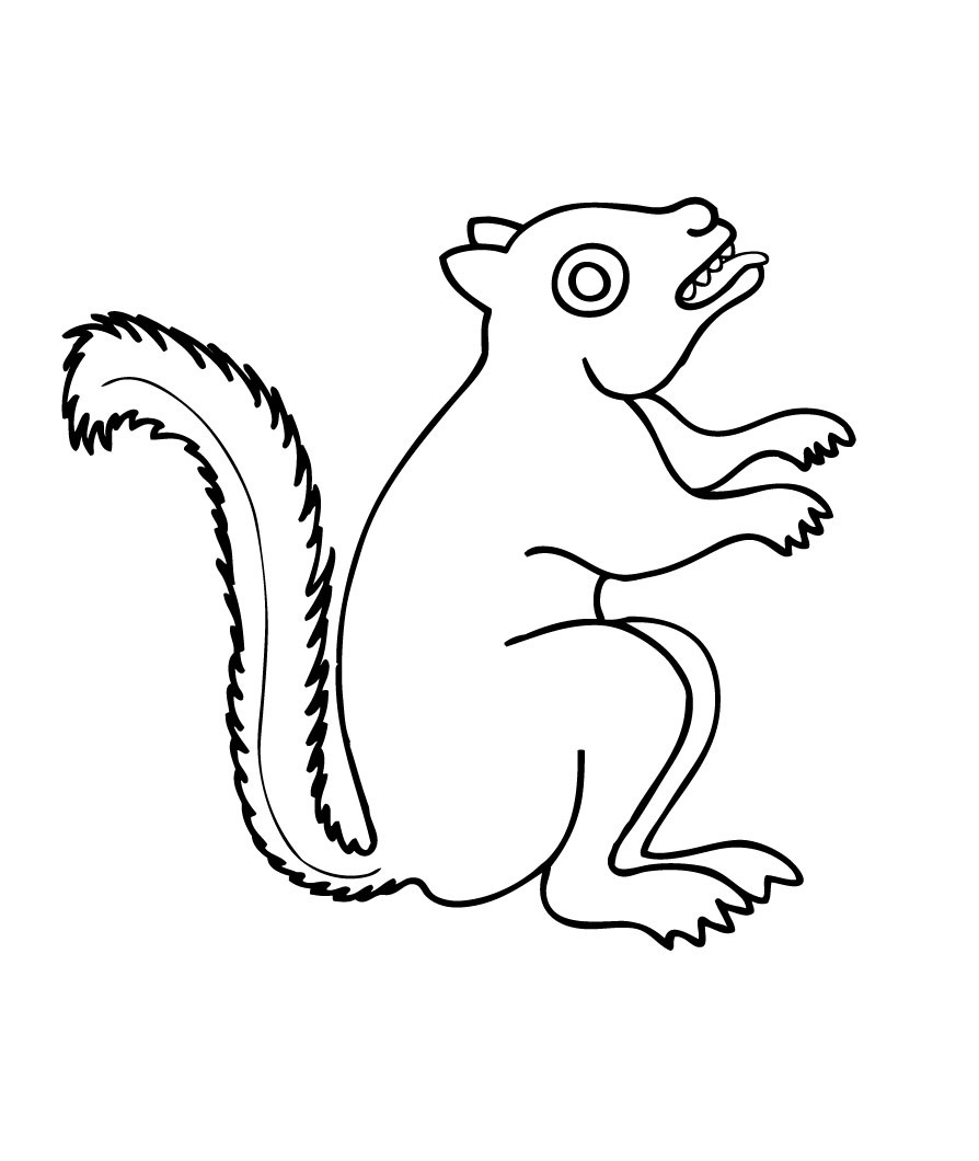 free coloring pages for squrrils - photo#40