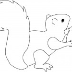 Squirrel Coloring Pages for Kids Photo