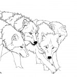 Wolf Coloring Page Images