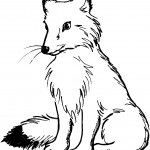 Wolf Coloring Page Picture