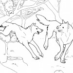 Wolf Coloring Page for Kids Image