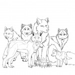 Wolf Coloring Page for Kids Photos
