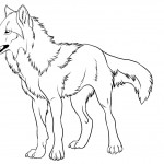 Wolf Coloring Pages Photo