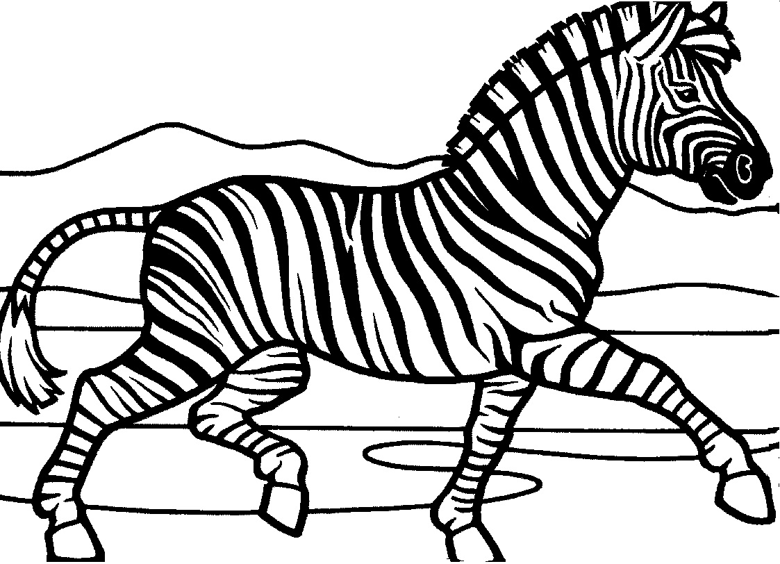 Zebra Coloring Page For Kids Images