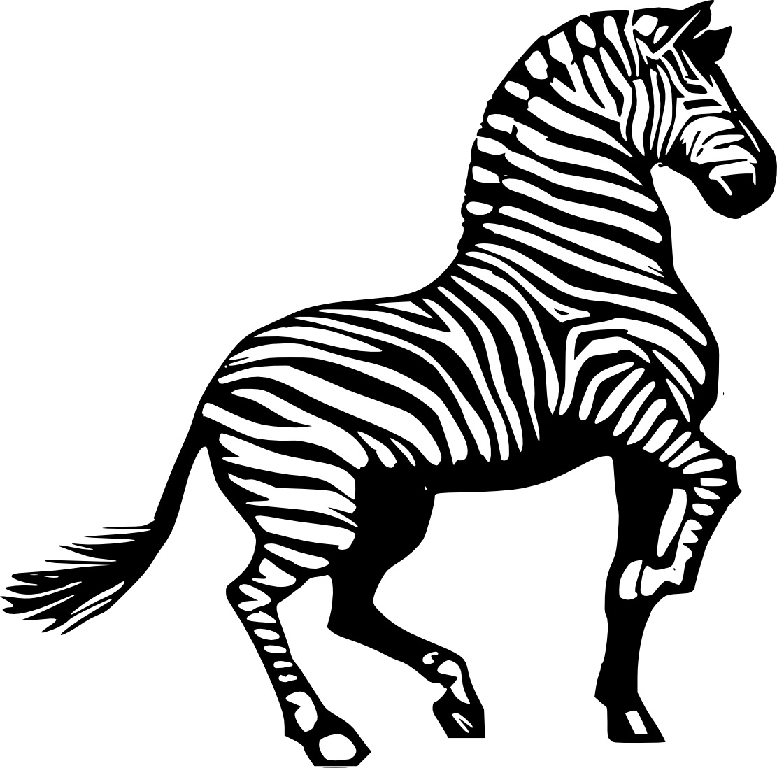 Emejing Zebra Printable Coloring Pages Pictures Printable